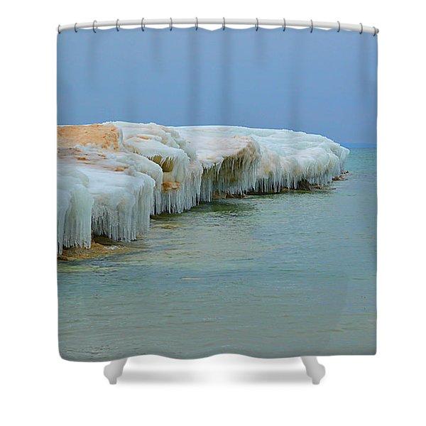 Winter Sculpting Shower Curtain