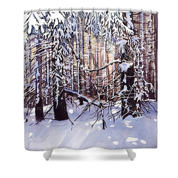 Wintertime Painting Shower Curtain