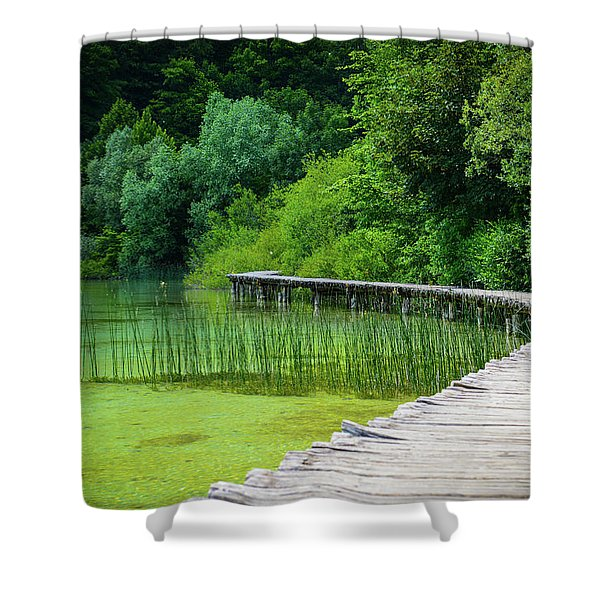 Wooden Path In The Forest Shower Curtain