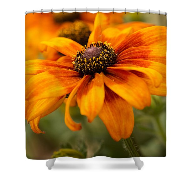 Shower Curtain featuring the photograph Yellow And Orange Petals by Mary Jo Allen