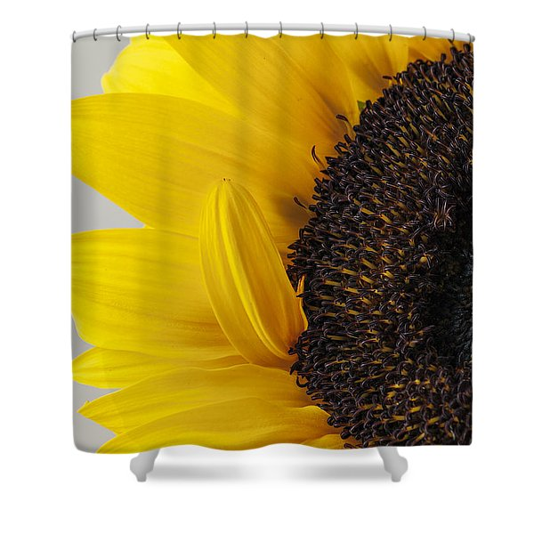 Yellow Sunflower Photograph Shower Curtain