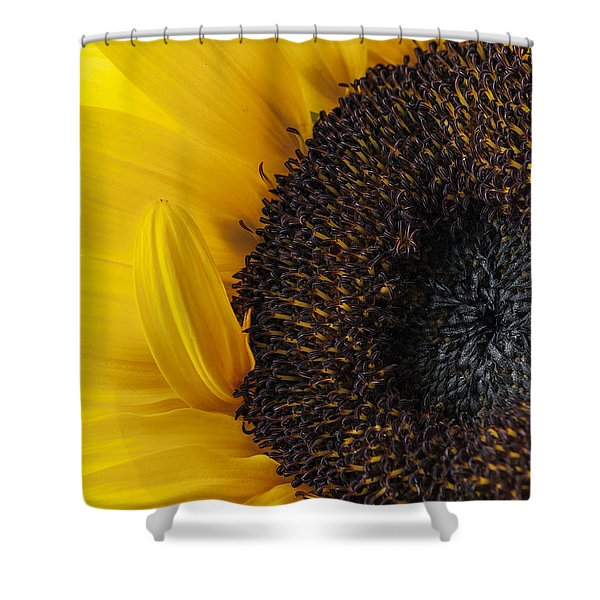 Yellow Sunflower Photograph Shower Curtain