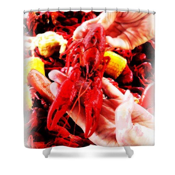 102715 Louisiana Lobster Shower Curtain