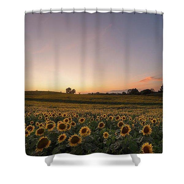 Sunflower Sunset Shower Curtain