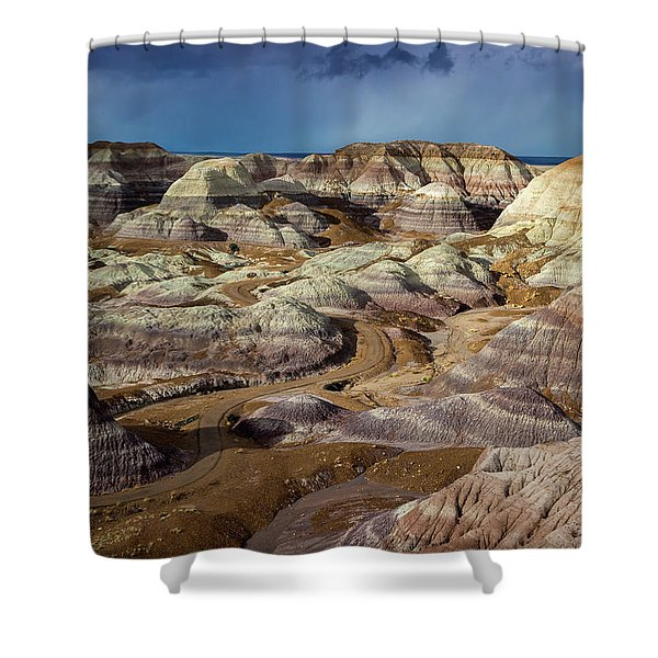The Petrified Forest National Park Shower Curtain
