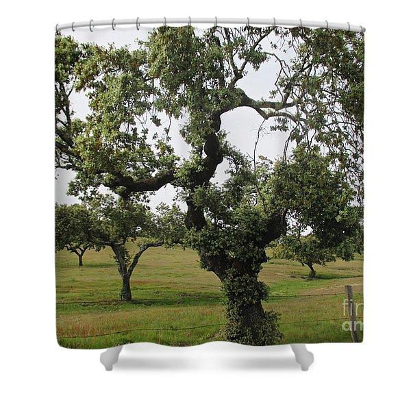 Mediterranean Oaks Shower Curtain