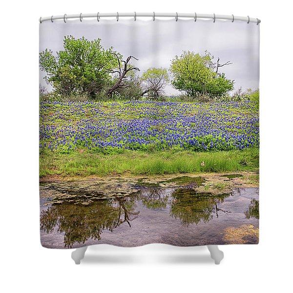 Texas Bluebonnets 7 Shower Curtain