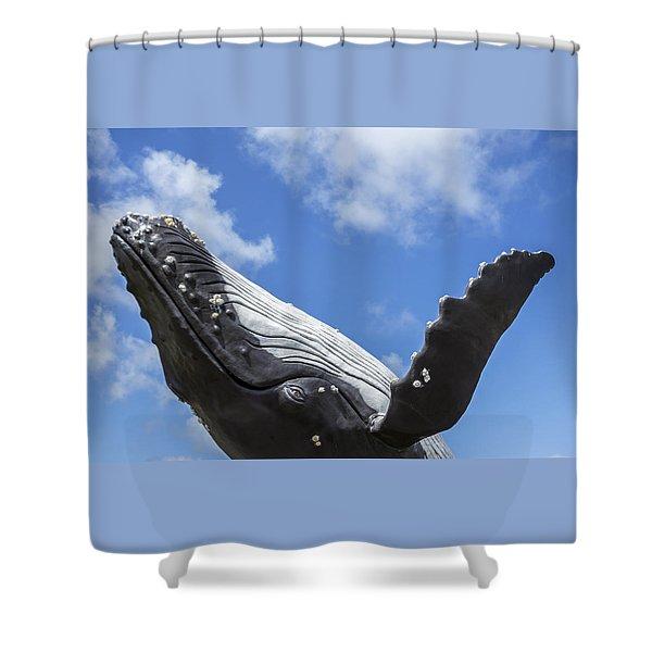 150729p196 Shower Curtain