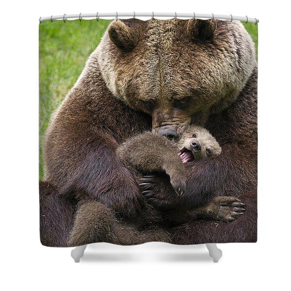 Mother Bear Cuddling Cub Shower Curtain
