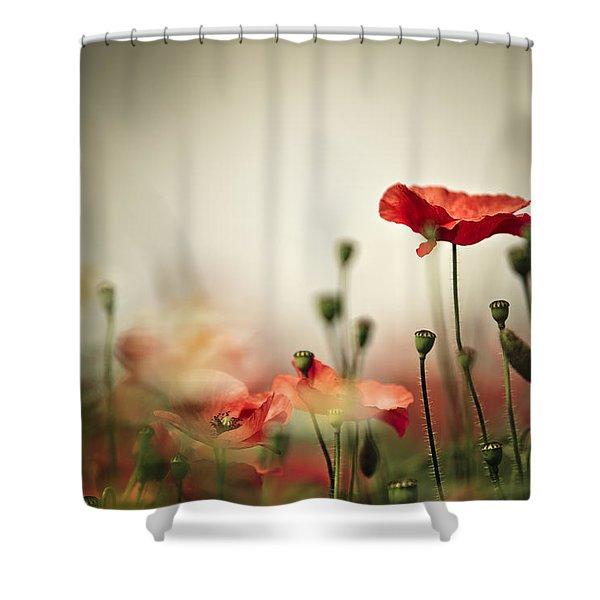 Poppy Meadow Shower Curtain