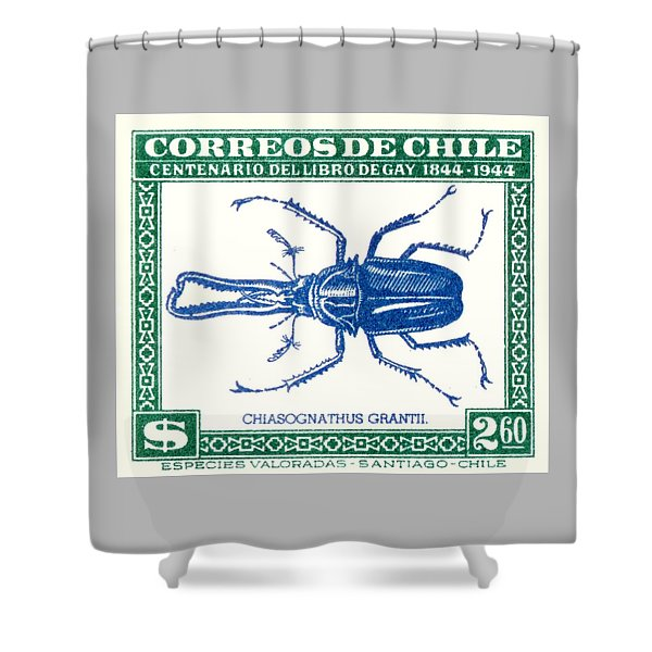 1948 Chile Stag Beetle Postage Stamp Shower Curtain