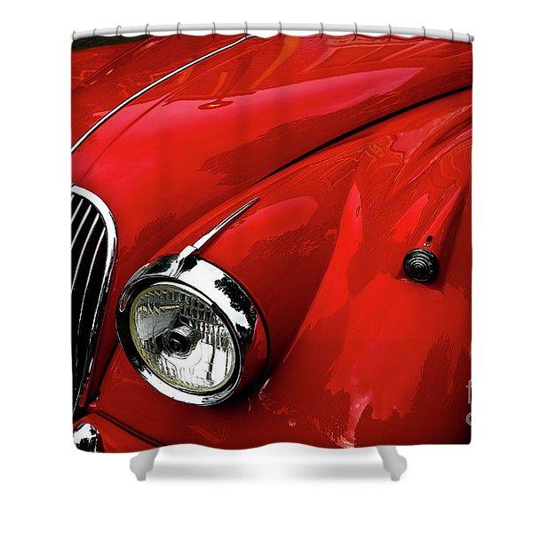 Red Jaguar Shower Curtain