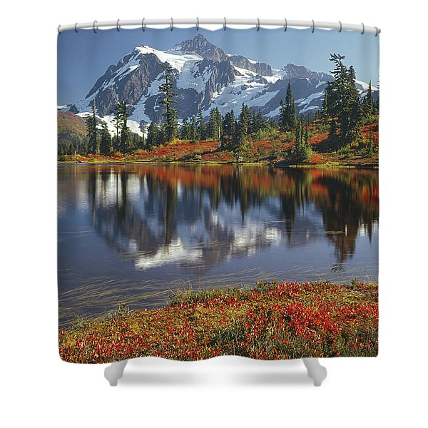 1m4208 Mt. Shuksan And Picture Lake Shower Curtain