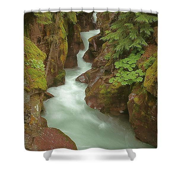 1m8115 Avalanche Gorge Mt Shower Curtain