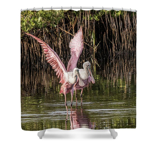 A Pair Of Spoonbills Shower Curtain