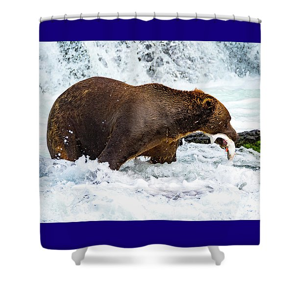 Alaska Brown Bear Shower Curtain