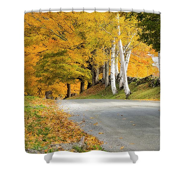 Shower Curtain featuring the photograph Autumn Road by Tom Singleton
