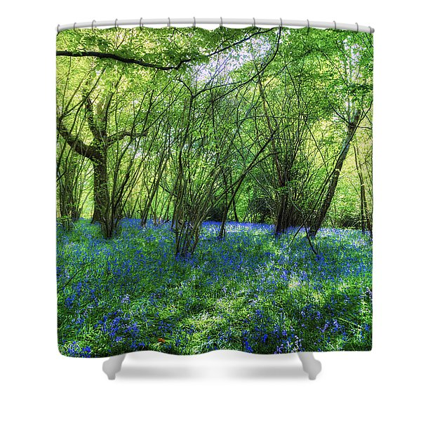 Bluebells In The New Forest Shower Curtain