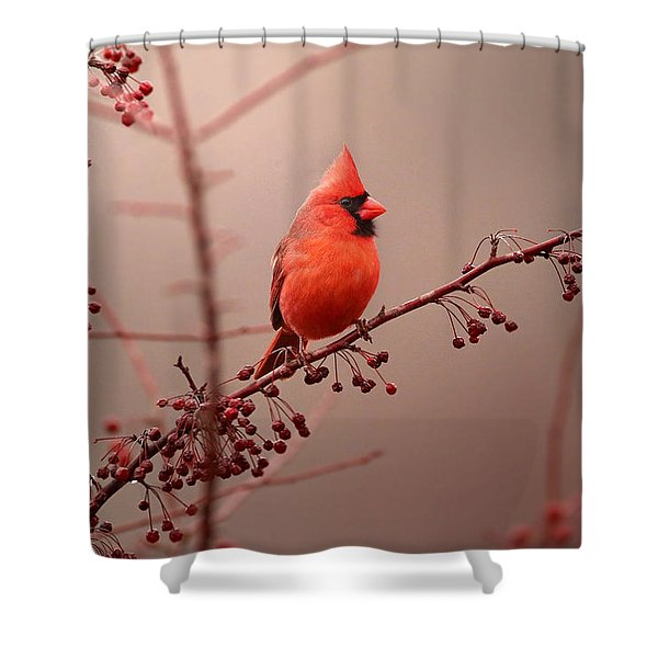 Bold Beauty Shower Curtain