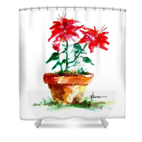 Cracked Pot  Shower Curtain