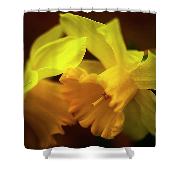 2 Daffodils Shower Curtain