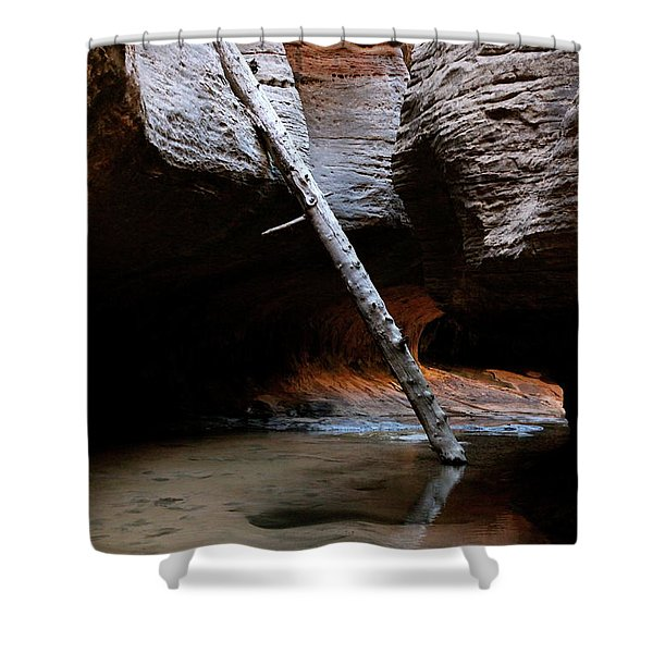 Hanging By A Moment Shower Curtain