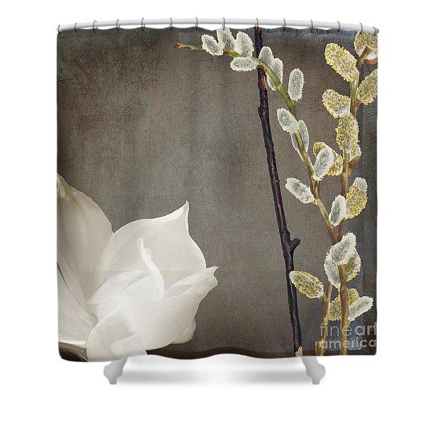 India II Shower Curtain