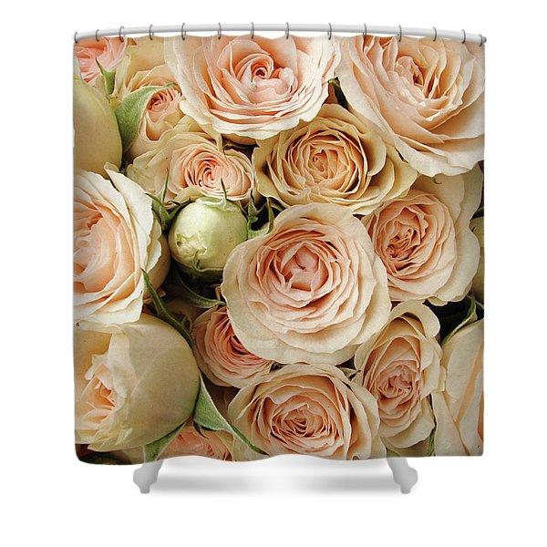 Rose Blush Shower Curtain