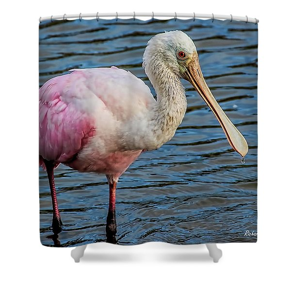 Roseate Spoonbill 1 Shower Curtain