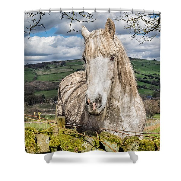 Shower Curtain featuring the photograph Rustic Horse by Nick Bywater