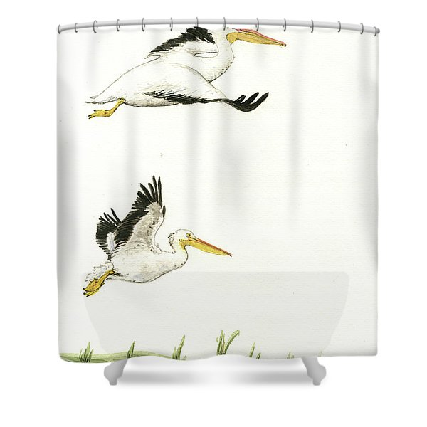 The Fox And The Pelicans Shower Curtain