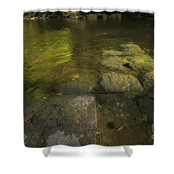 The River Swale Shower Curtain
