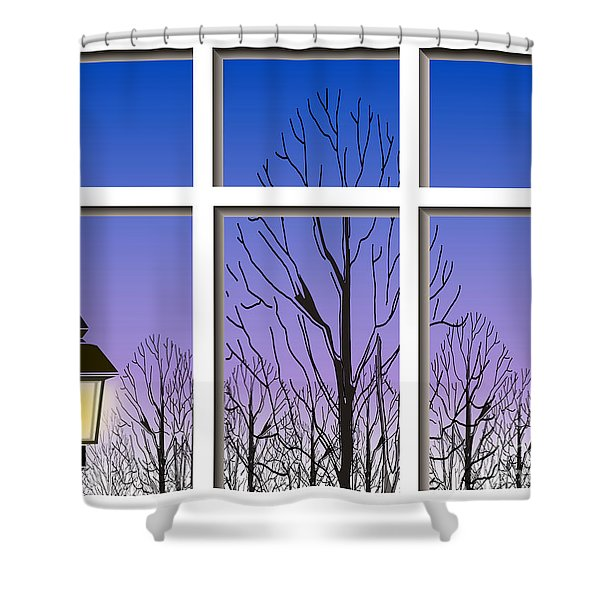The Window Shower Curtain