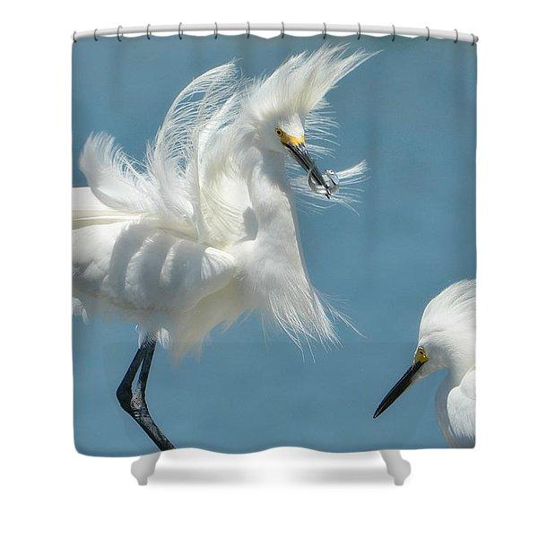 Triumphant Shower Curtain