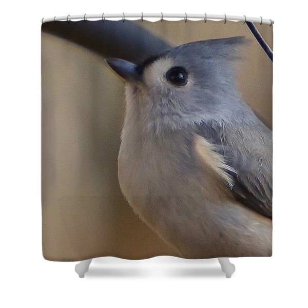 Shower Curtain featuring the photograph Tufted Titmouse by Robert L Jackson