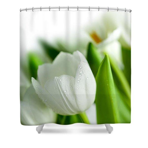 White Tulips Shower Curtain