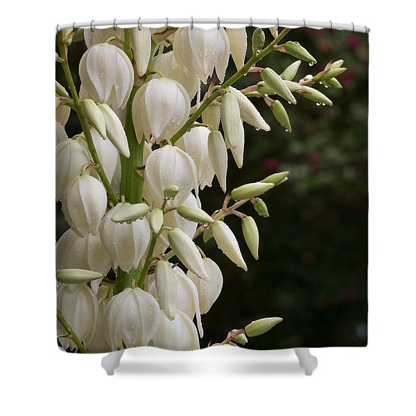 Yucca Plant In Bloom Shower Curtain