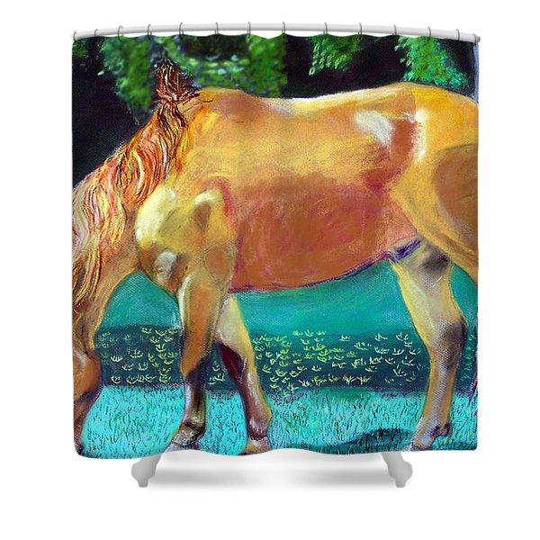 2009081315 Grazing Horse Shower Curtain