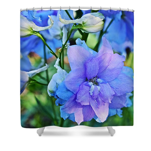 2015 Mid September At The Garden Larkspur 2 Shower Curtain