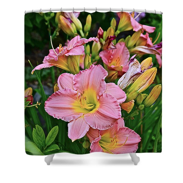 2015 Summer At The Garden Daylilies 1 Shower Curtain