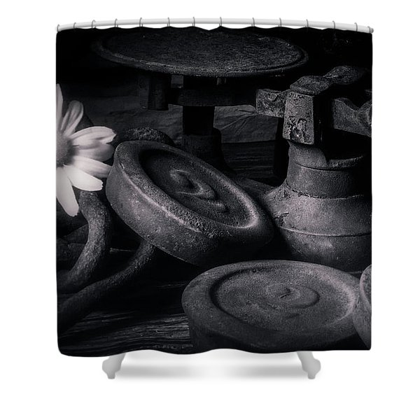 221 Shower Curtain