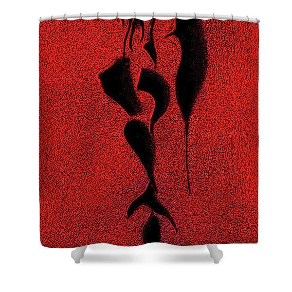 . Shower Curtain