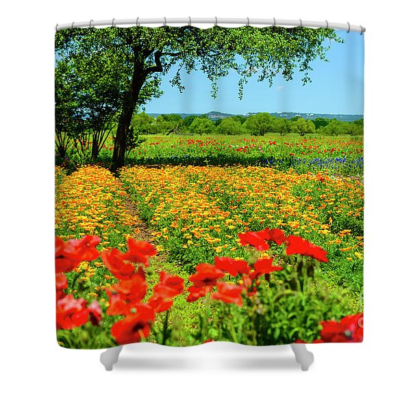 Hill Country In Bloom Shower Curtain