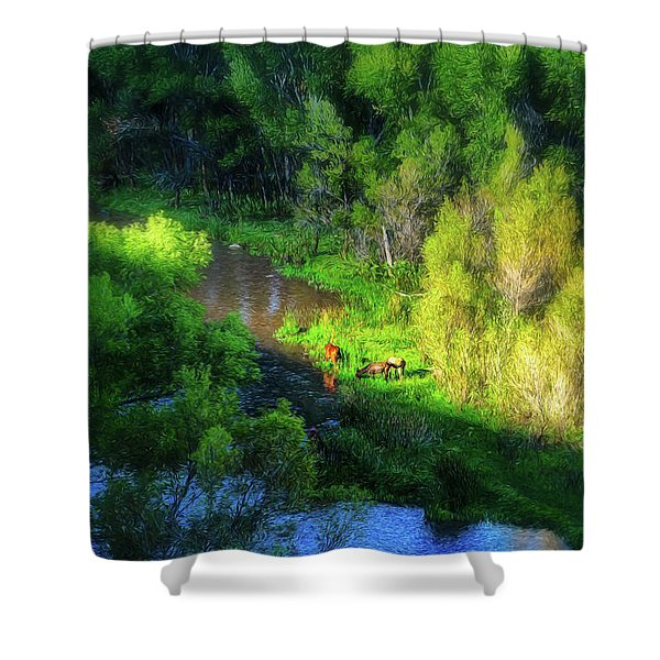 3 Horses Grazing On The Bank Of The Verde River Shower Curtain