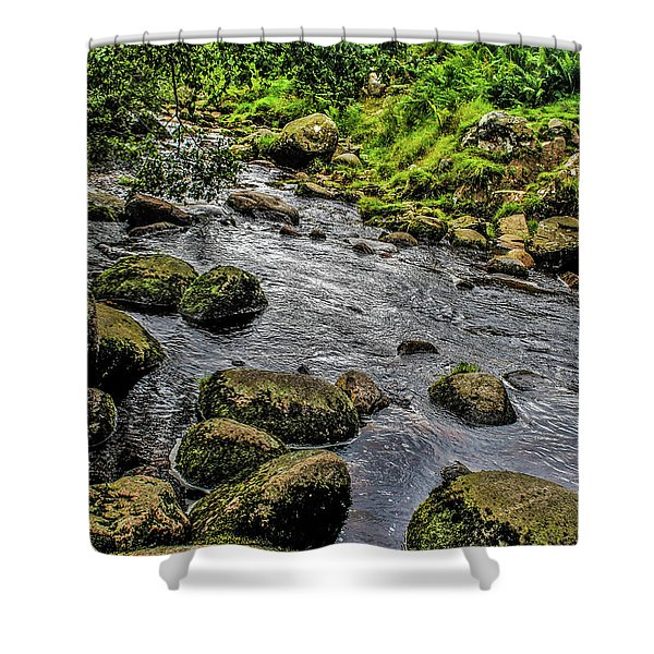 Linhope Shower Curtain