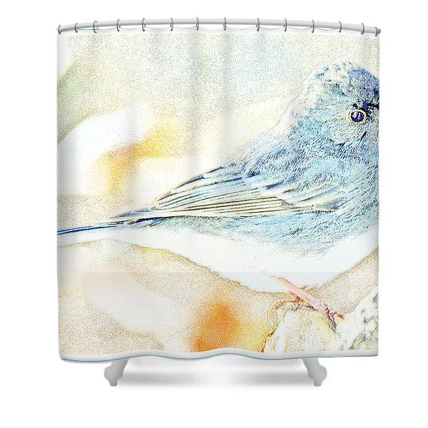 Slate-colored Junco, Snowbird, Male, Animal Portrait Shower Curtain