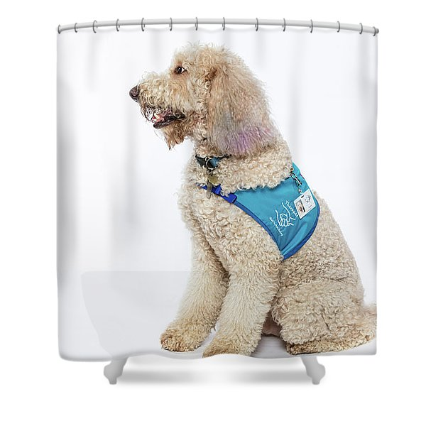 3010.057 Therapet Shower Curtain