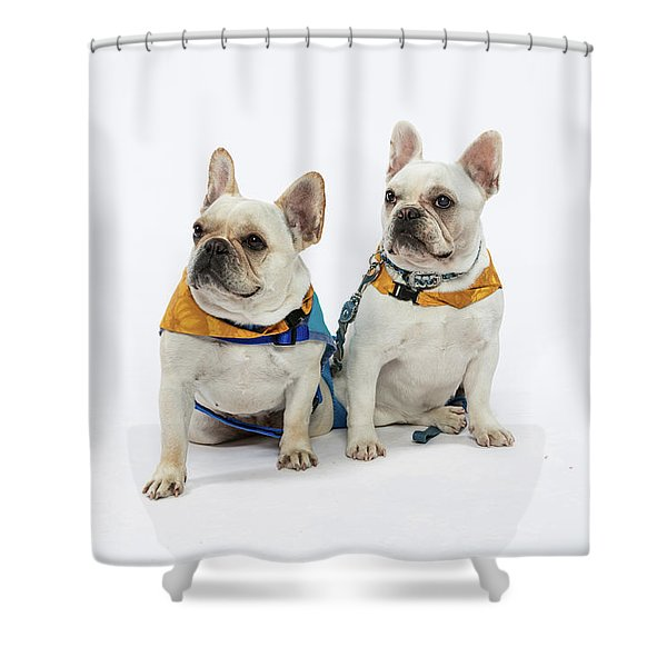 3010.062 Therapet Shower Curtain