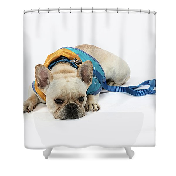 3010.066 Therapet Shower Curtain