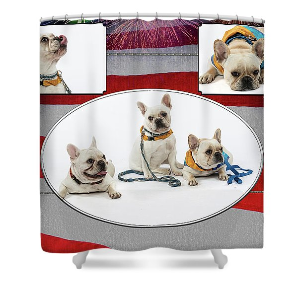 3010.069 Therapet Shower Curtain